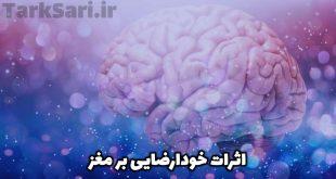 اثرات خودارضایی بر مغز